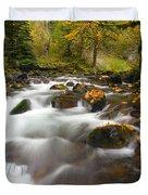 Autumn Passages Duvet Cover