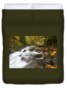 Autumn Passages Duvet Cover