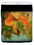 Autumn Persimmon Leaves Duvet Cover