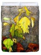 Autumn Rainbow Duvet Cover
