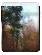 Autumn Scene 10-23-09 Duvet Cover