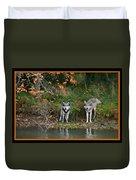Autumn Wolf Study  Duvet Cover