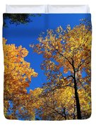 Autumn Yellow Foliage On Tall Trees Against A Blue Sky In Palermo Duvet Cover