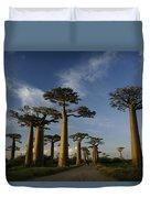 Avenue Des Baobabs Duvet Cover