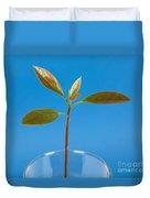 Avocado Seedling Duvet Cover