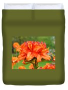 Azaleas Orange Red Azalea Flowers 11 Botanical Giclee Art Baslee Troutman Duvet Cover