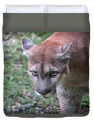 Babcock Wilderness Ranch - Oceola The Panther On The Prowl Duvet Cover
