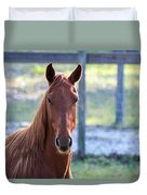 Babcock Wilderness Ranch - Red Horse Portait Duvet Cover