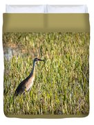 Babcock Wilderness Ranch - Sandhill Crane Duvet Cover