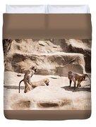 Baboons Monkeys Having Sex Duvet Cover