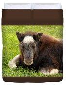 Baby Alaskan Musk Ox Duvet Cover