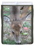 Baby Backyard Button Buck Duvet Cover