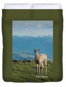 Baby Big Horn Sheep Duvet Cover
