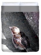 Baby Bird - Toyoung To Fly Duvet Cover
