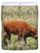 Baby Bison Duvet Cover