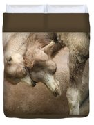 Baby Camels Duvet Cover