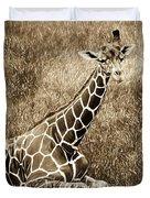 Baby Giraffe In Grasses Duvet Cover