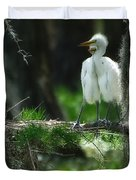 Baby Great Egrets With Nest Duvet Cover
