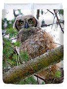Baby Great Horned Owl Duvet Cover