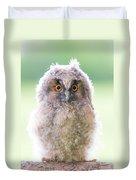 Baby Long-eared Owl Duvet Cover