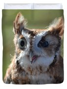 Cute Screetch Owl Duvet Cover