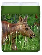 Baby Moose Duvet Cover