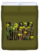 Baby Palm Trees Duvet Cover