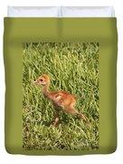 Baby Sandhill Crane Duvet Cover
