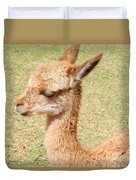 Baby Vicuna Duvet Cover