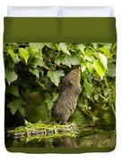 Baby Water Vole Stretching Up Duvet Cover
