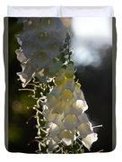 Backlit Foxgloves 2 Duvet Cover