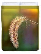 Backlit Seed Head In Fall Duvet Cover