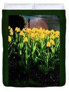 Backlit Tulips Duvet Cover