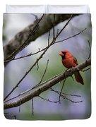 Backyard Cardinal Duvet Cover