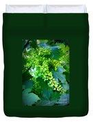 Backyard Garden Series - Young Grapes Duvet Cover