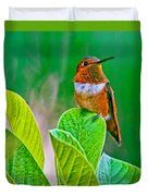 Backyard Hummingbird #22 Duvet Cover