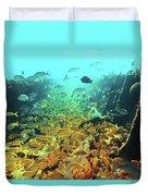 Bahamas Shipwreck Fish Duvet Cover