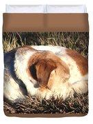 Bailey Resting Duvet Cover