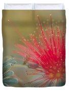 Baja Fairy Duster Duvet Cover