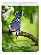 Balanced Blue Jay Duvet Cover