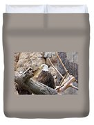 Bald Eagle - Portrait Duvet Cover