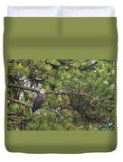 Bald Eagle In A Pine Tree, No. 4 Duvet Cover