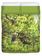 Bald Eagle In A Pine Tree, No. 5 Duvet Cover