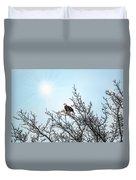 Bald Eagle In A Tree Enjoying The Sunlight Duvet Cover