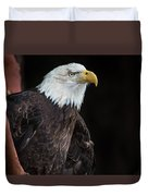 Bald Eagle Intensity Duvet Cover
