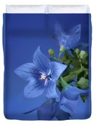 Balloon Flowers - Blooms And Buds Duvet Cover