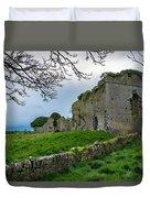 Ballyboggan Abbey, Co. Meath Duvet Cover