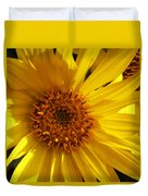 Balsamroot Flower Duvet Cover