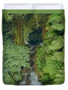 100837-bamboo And Ferns Creek  Duvet Cover