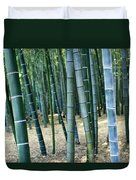 Bamboo Tree Forest, Close Up Duvet Cover